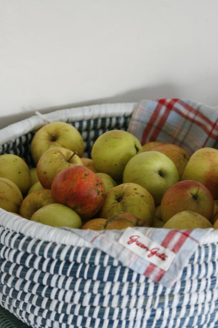 Epler fra hagen